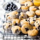 Mini Blueberry Cupcakes